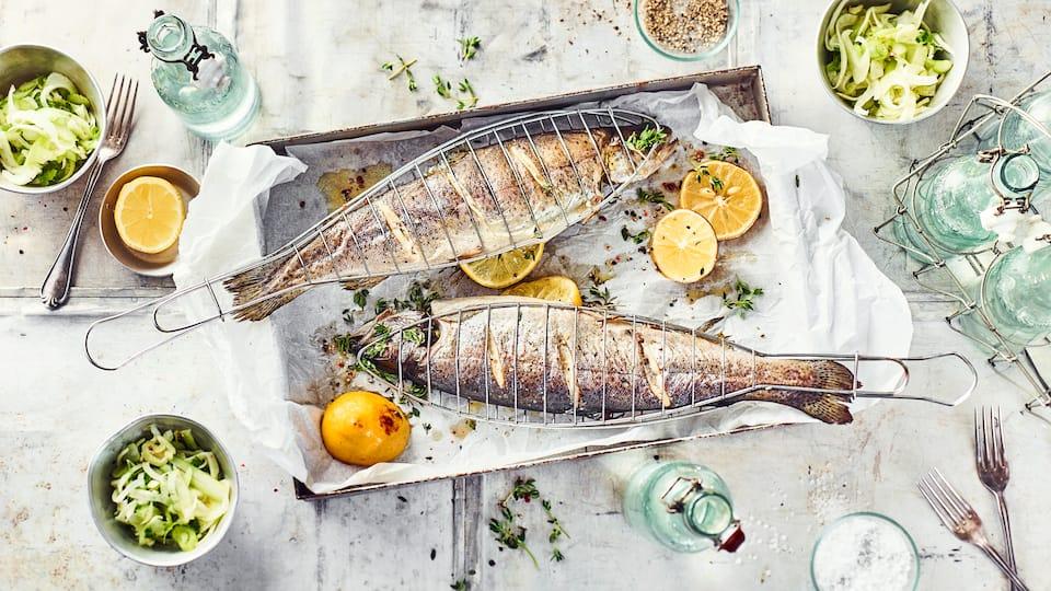 Bereiten Sie mit unserem Rezept Forellen im Backofen zu: Würziger Fisch mit einem Fenchel-Limetten-Salat serviert, schmeckt aus dem Ofen und vom Grill.