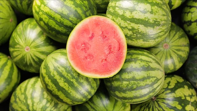 Know-How: Eine Wassermelone