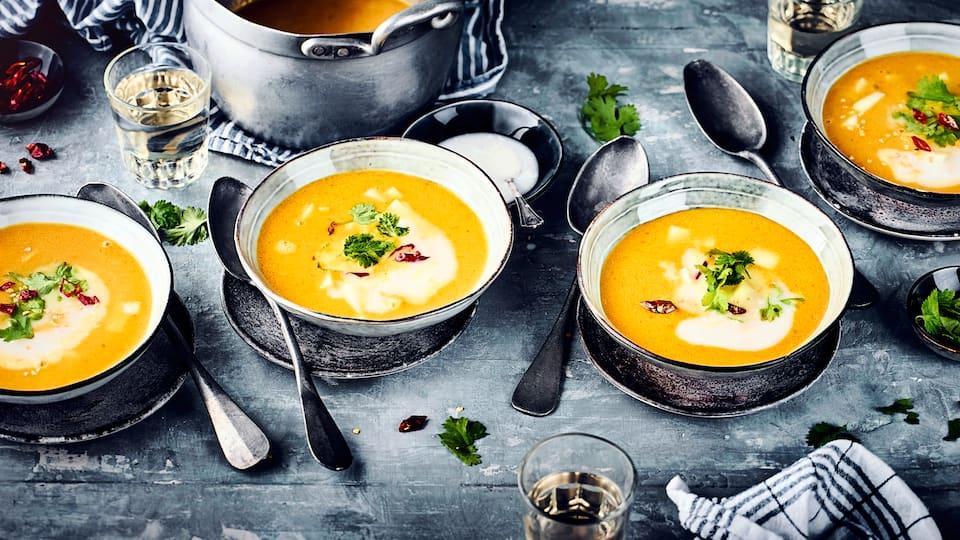 Mit unserem Rezept für Karottensuppe mit Ingwer gelingt die perfekte Kombination aus fruchtiger Süße und pikanter Würze. Probieren Sie es aus!