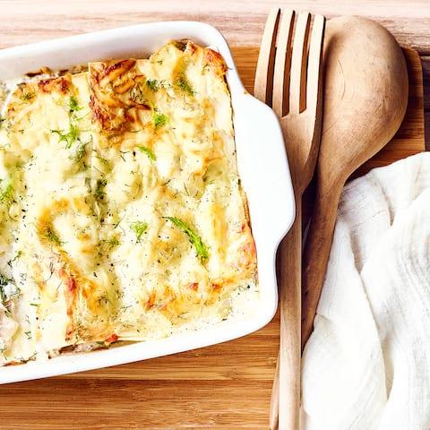 Fisch Fenchel Lasagne Rezept Edeka