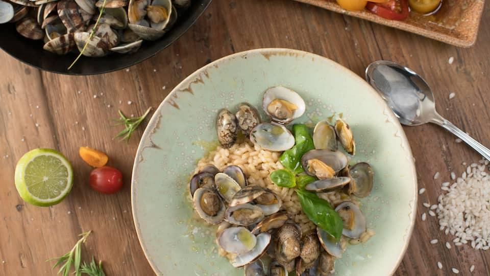 Sie haben Lust auf ein köstliches Muschel-Rezept? Meeresfrüchte wie Austern, Miesmuscheln oder Venusmuscheln gelten bei vielen als maritime Delikatesse und lassen sich auf unterschiedlichste Art köstlich zubereiten.